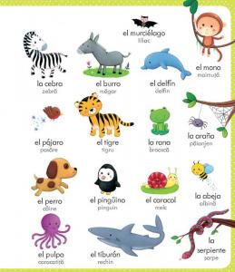 Primul meu dictionar spaniol-roman(Usborne)2