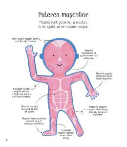 Prima mea carte despre corpul uman4