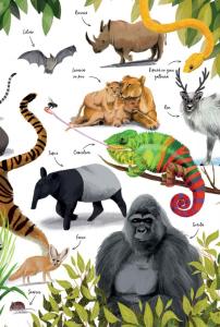 Prima mea carte despre natura5