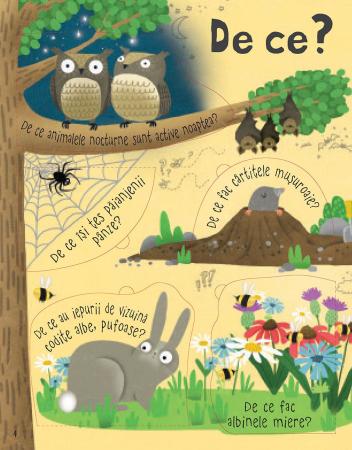 Intrebari si raspunsuri despre natura (Usborne)4