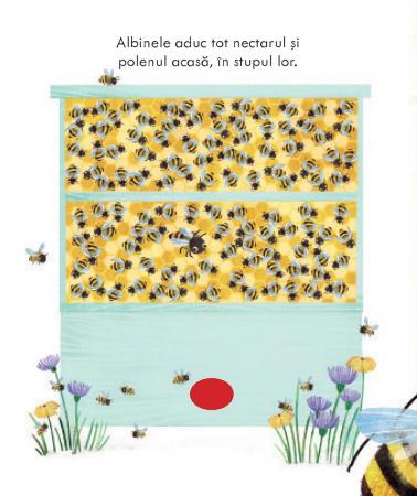 Stupul albinelor (Usborne)3