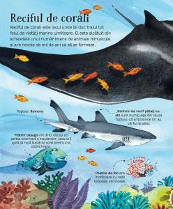 Marea carte a animalelor din mari si oceane [1]