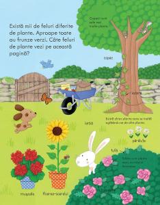 Prima mea carte despre cum cresc plantele (Usborne) [2]