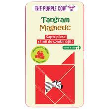 Tangram magnetic [0]