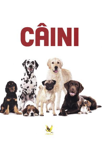 Caini 0