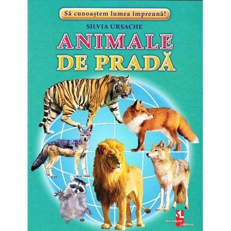 Animale de prada - Cartonase de Silvia Ursache 0