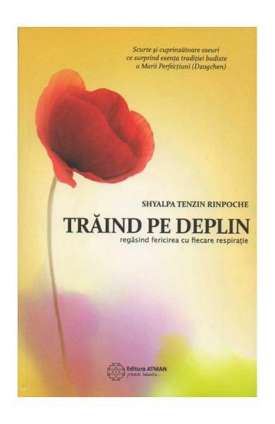 Traind Pe Deplin de Shyalpa Tenzin Rinpoche 0