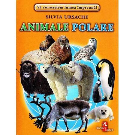 Animale polare - Cartonase de Silvia Ursache 0