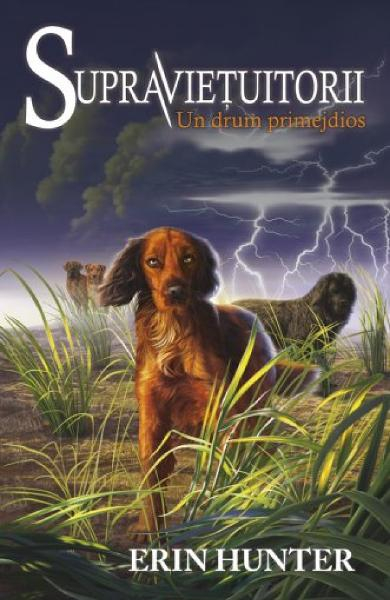 Supravietuitorii Vol.4: Un drum periculos de Erin Hunter 0