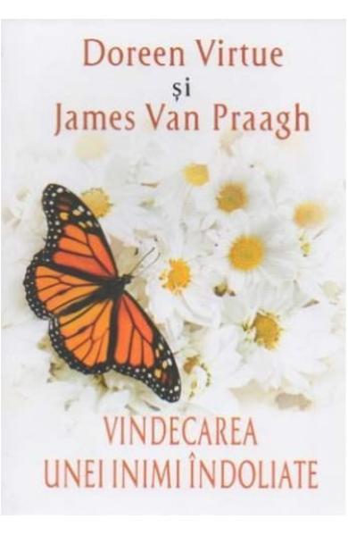 Vindecarea Unei Inimi Indoliate de Doreen Virtue, James Van Praagh 0
