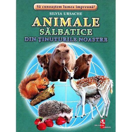 Animale salbatice din tinuturile noastre - Cartonase de Silvia Ursache 0