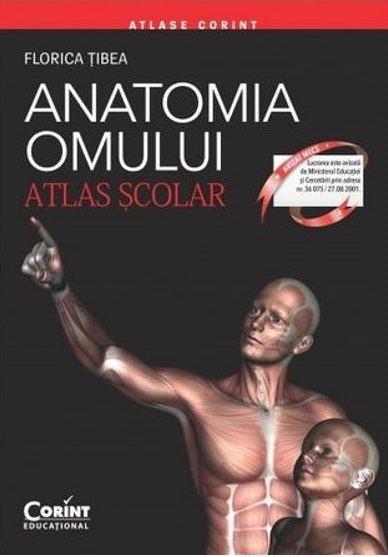 Anatomia omului. Atlas scolar de Florica Tibea 0