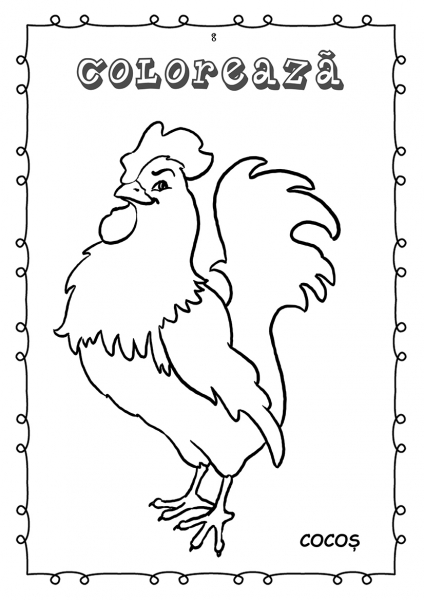 Animale si pasari din ograda - carte de colorat 1