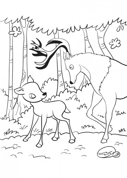 Bambi - carte de colorat 1