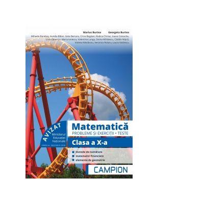 Matematica - Probleme si exercitii, teste pentru clasa a X-a de Marius Burtea, Georgeta Burtea 0