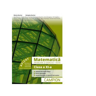 Matematica - Probleme si exercitii, teste pentru clasa a XI-a, Semestrul 2