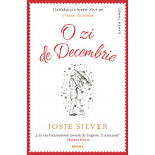 O zi de decembrie de Josie Silver 0