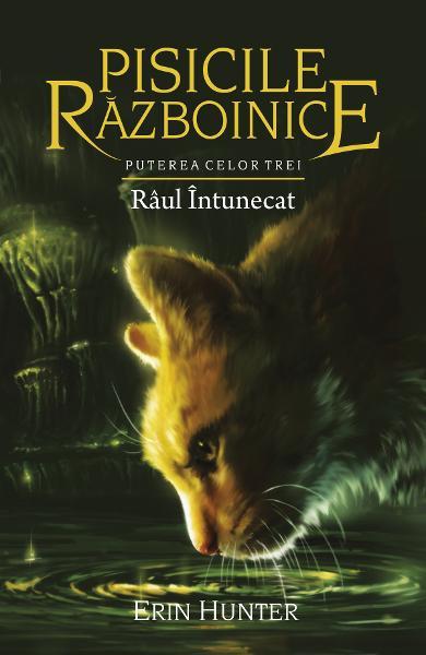 Pisicile Razboinice vol.14: Raul intunecat de Erin Hunter 0