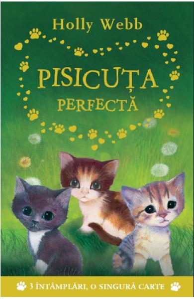 Pisicuta perfecta de Holly Webb 0