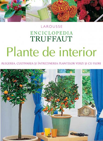 Plante de interior de Larousse 0