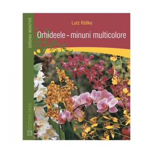 Orhideele – minuni multicolore