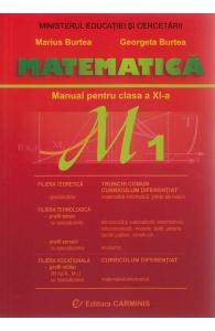 Matematica M1  clasa a XI a