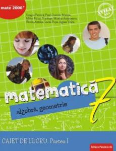 Matematica. Algebra, geometrie. Caiet de lucru. Clasa a 7-a. Consolidare. Partea I