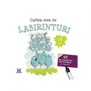 Cartea mea cu labirinturi. 46 de labirinturi refolosibile + o carioca - DPH, + 3 ani