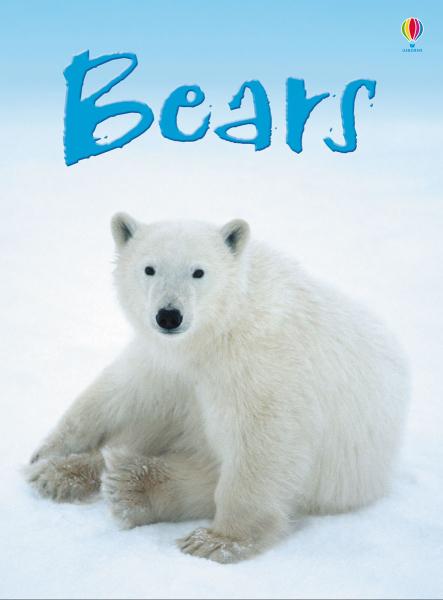 Bears [0]