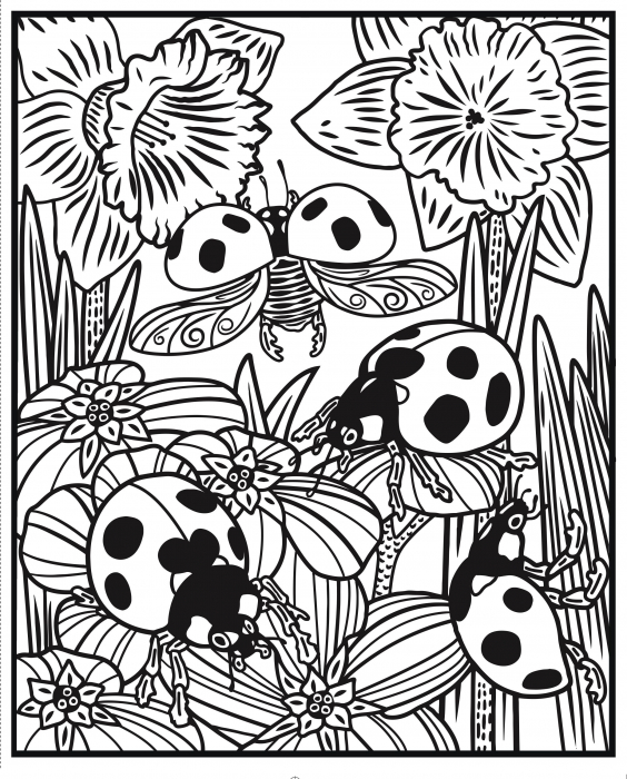 Bugs Magic Painting Book [2]