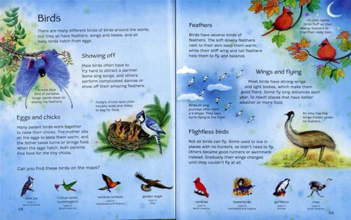 Children's picture atlas of animals [3]