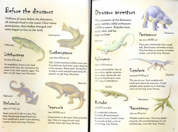 Dinosaurs sticker book [1]