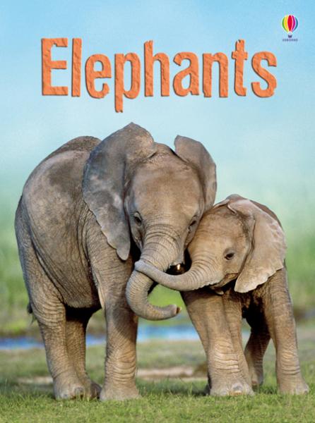 Elephants [0]