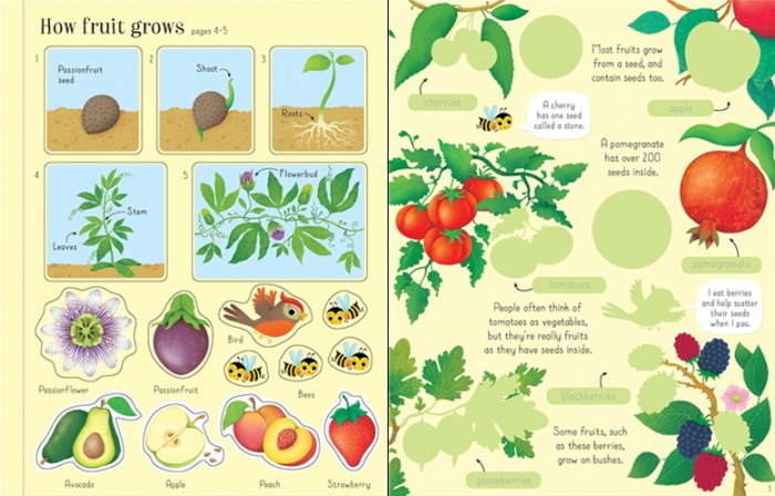First sticker book Fruit and vegetables [1]