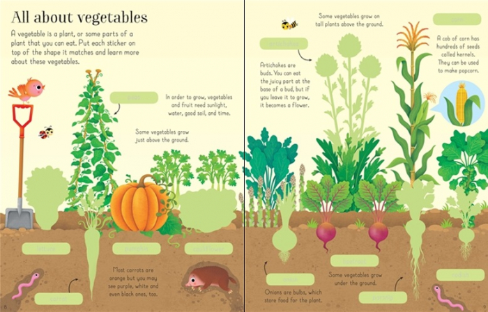 First sticker book Fruit and vegetables [2]