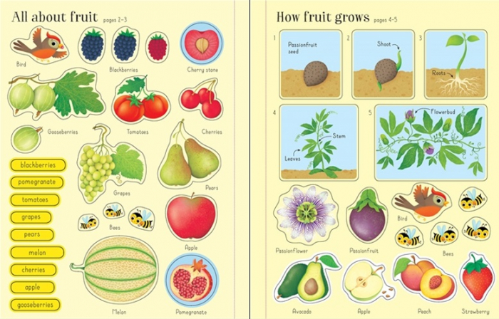 First sticker book Fruit and vegetables [3]