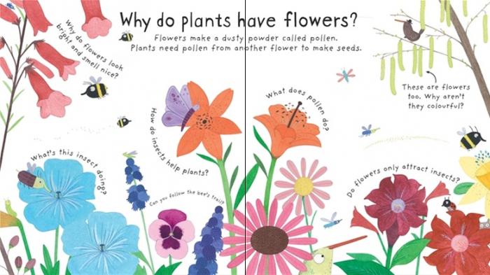 How do flowers grow? [1]