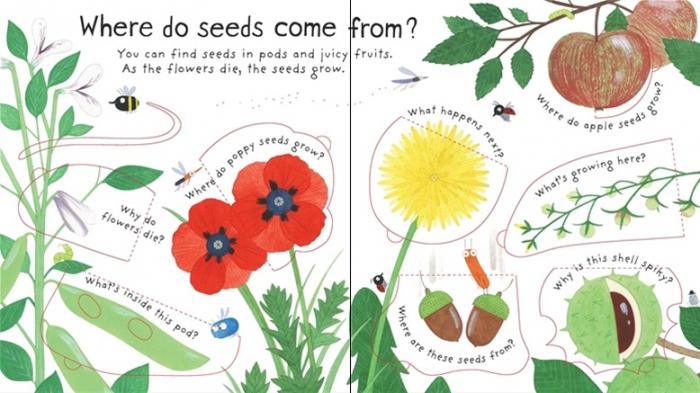 How do flowers grow? [2]