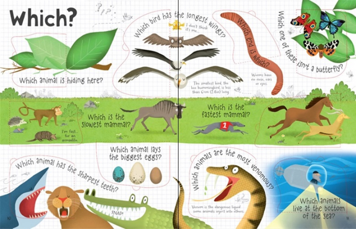 Lift-the-flap questions and answers about animals [3]