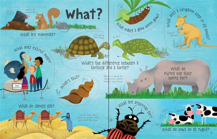 Lift-the-flap questions and answers about animals [2]