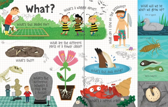 Lift-the-flap questions and answers about nature [2]
