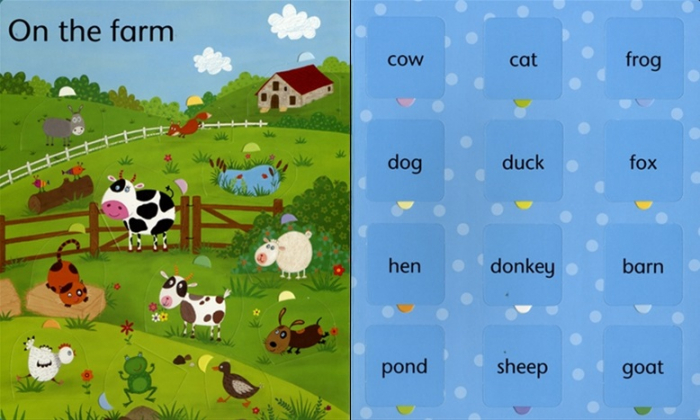 Lift-the-flap word book [1]