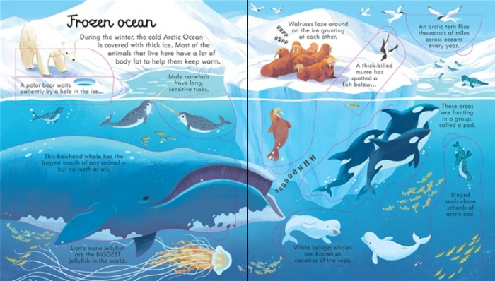 Look inside seas and oceans [3]