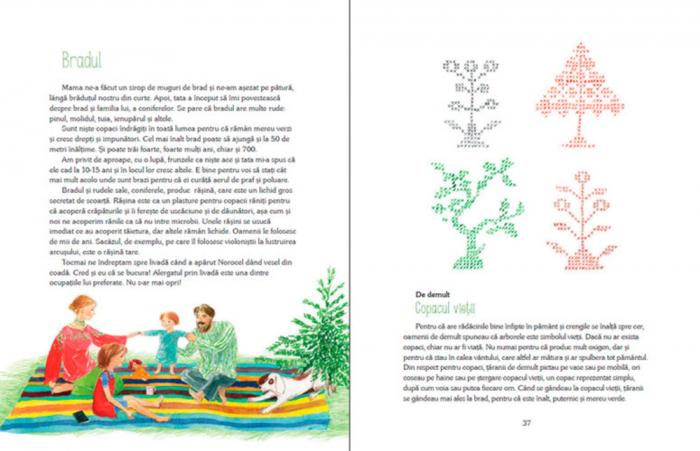Luli și căsuța din copac [6]