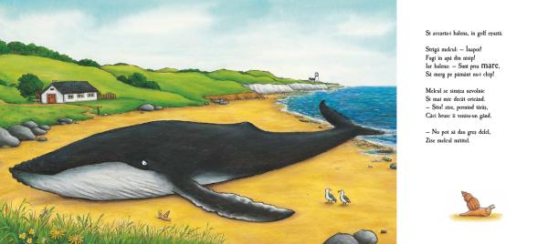 Melcul și balena [4]