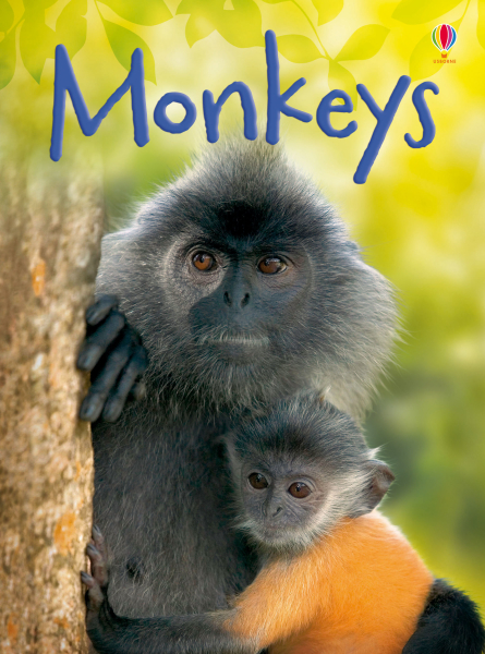 Monkeys [0]