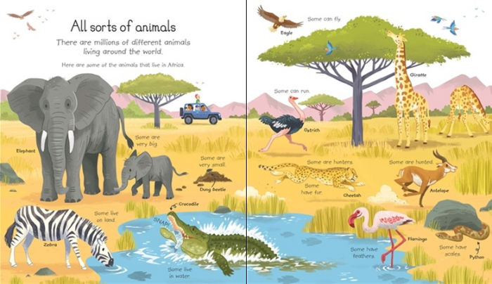 My very first animals book [1]