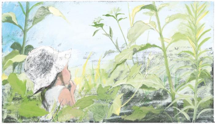 În iarbă [5]