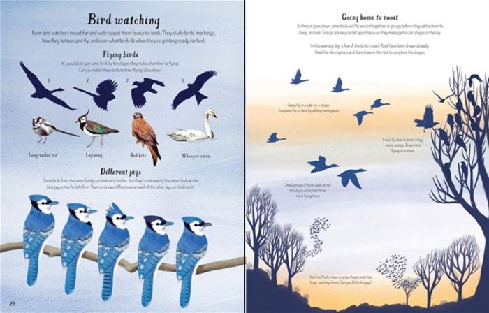 Nature activity book [3]