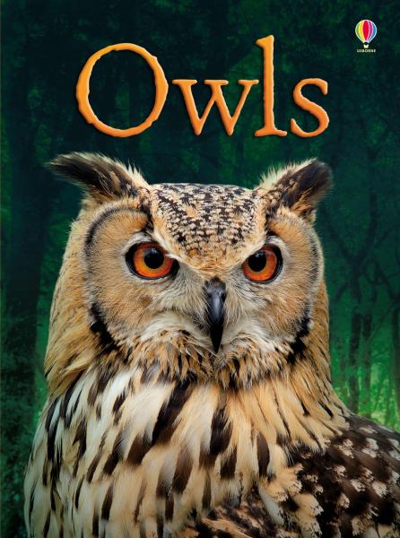 Owls [0]